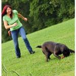 Körperaktives SPIEL mit Hund
