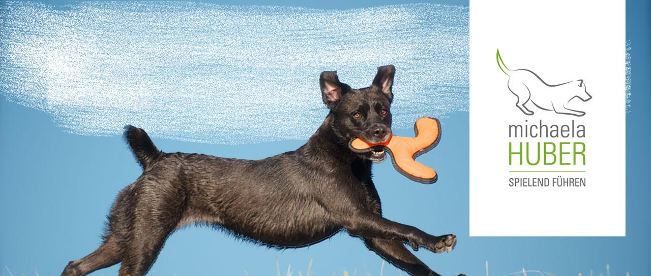 SPIELE-WORKSHOP Mensch & Hund